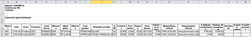 Imaginea nr. 9 – Lista detaliata comenzi aprovizionare (export Excel)- Synchron ERP