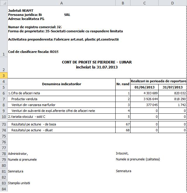 culegere rapoarte 4 bilant